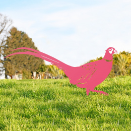 Ring-necked Pheasant Garden Sheet Steel Silhouette In Pink
