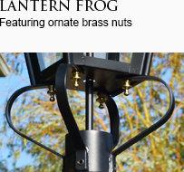 Lantern Frog
