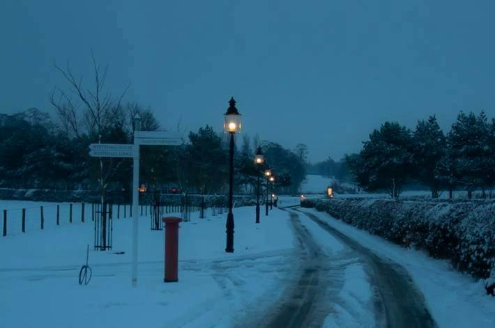 traditional garden lights lining a snow covered driveway. Black Bedroom Furniture Sets. Home Design Ideas