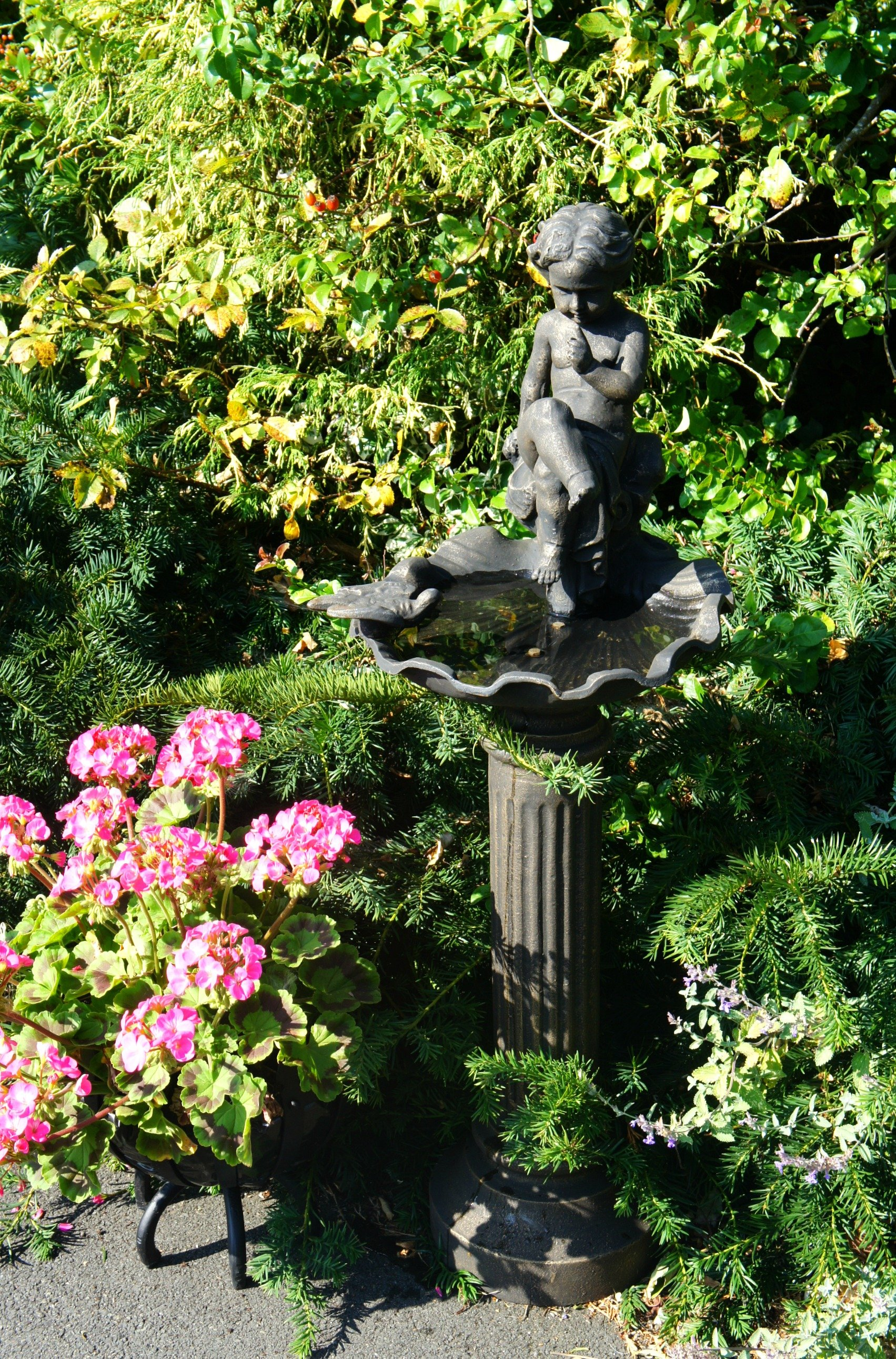 Garden water features and Accessories